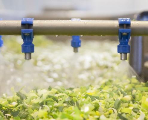wassen van de groenten